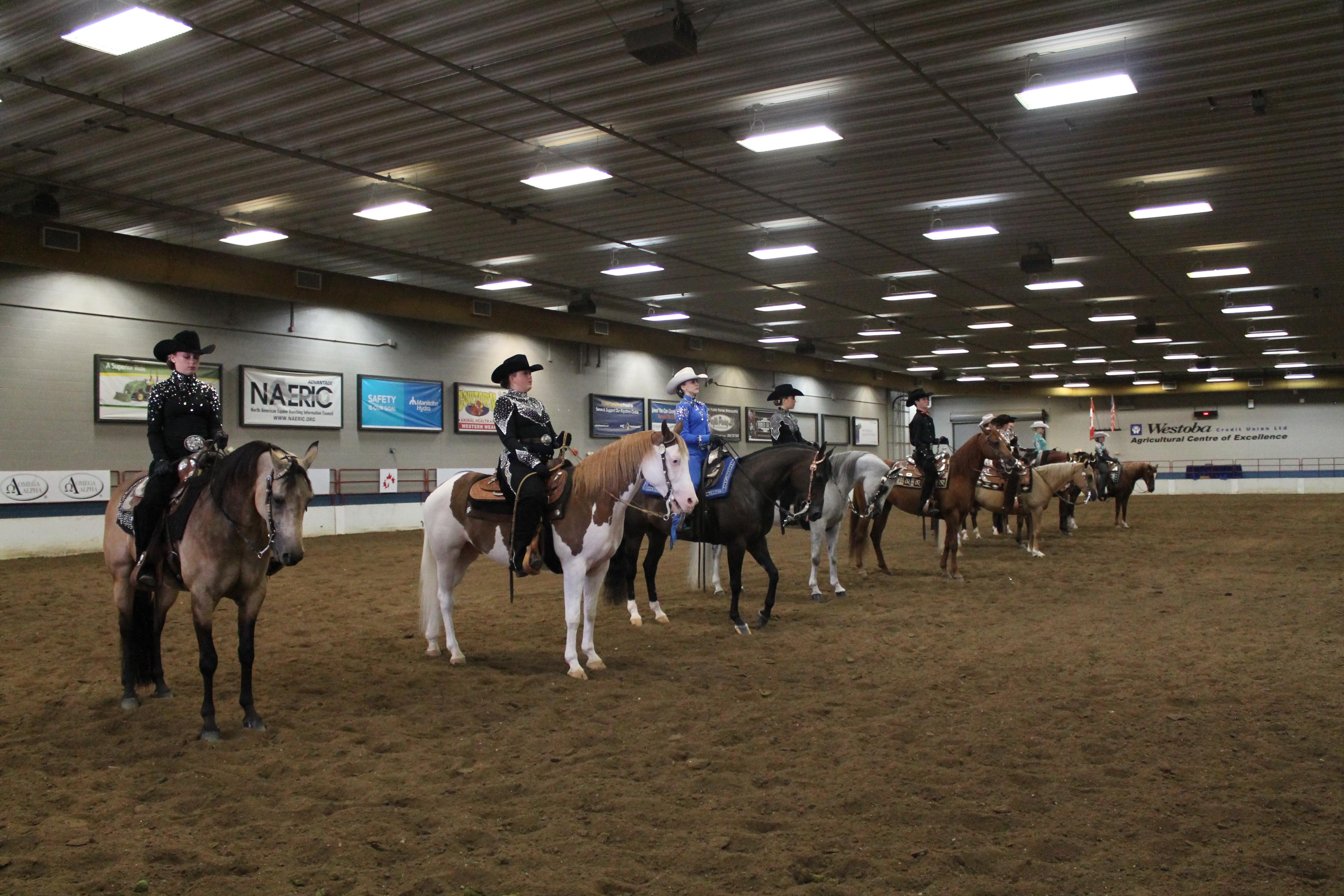 Canadian Arabian and Half Arabian Horse Show