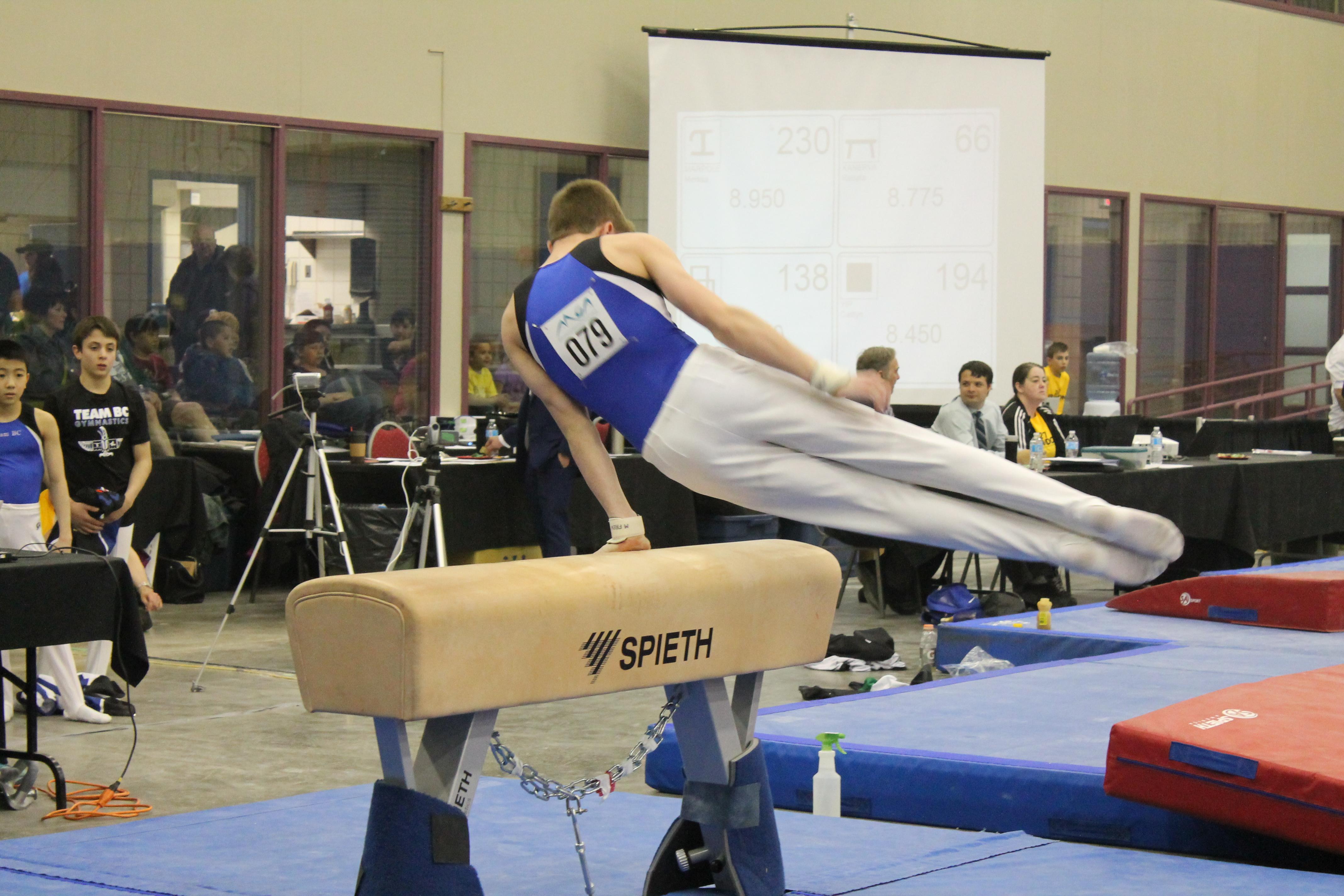 Western Canadian Artistic Gymnastics